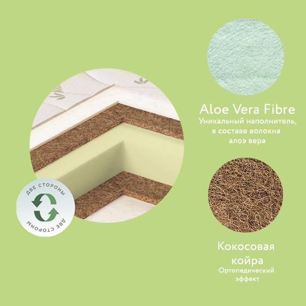 4. Aloe Vera Ring.jpg