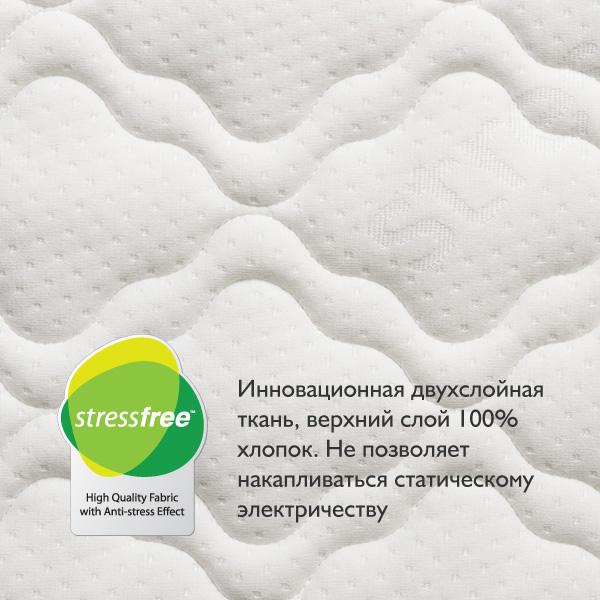 3. Eco Lat.jpg